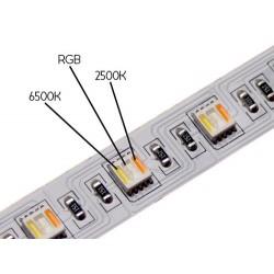 24W RGB CCT LED Streife HiLumen 60 WRGBWW SMDs/m 12V DC 1m PRO AIO Diode GL4316